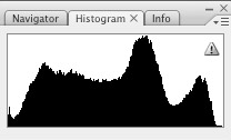 Facemask Histogram