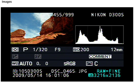 D300S Histogram view?